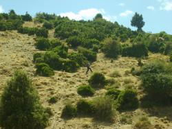 trekking-3